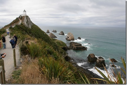 Nugget Point and Rocks
