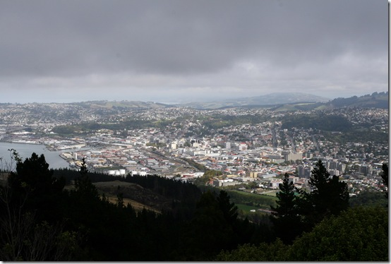 View of Dunedin from the lookout