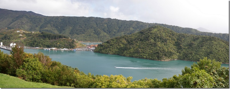 Picton Harbour in sunshine