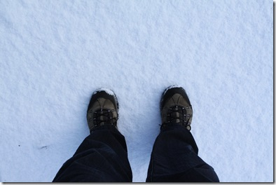 Snow at my feet
