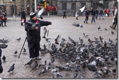 Bird man in the square
